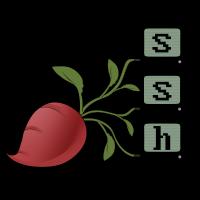Authentication Manager — RadSSH 1 1 0 documentation